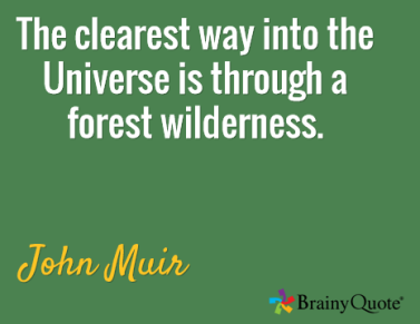 Muir quote